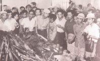 Đảng Đại Việt, CIA và cuộc chiến bí mật ở miền Bắc Việt Nam