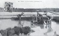 Phản không tưởng trong xứ không tưởng: Chủ nghĩa khoái lạ và sự suy đồi ở Đông Dương giai đoạn 1890-1940 (Phần 1)